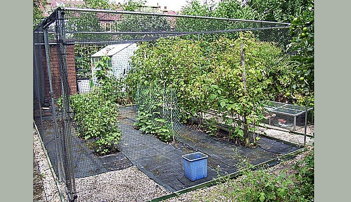 5.7 x 3.5m Bespoke Aluminium Fruit Cage, Mr Emms - London