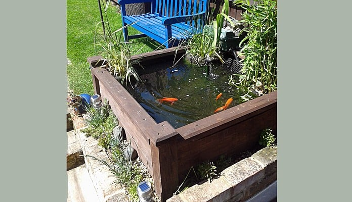 4ft x 4ft Raised Bed Pond, Ms Adams, Hertfordshire