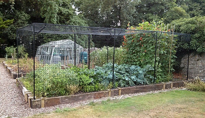 6.45 x 3.35m Bespoke Steel Fruit Cage with Deer Netting, Mr Bates - Somerset