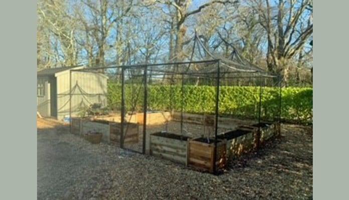5m x 5m Peak Roof Decorative Fruit Cage