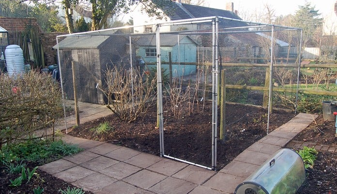 4m x 3.5m Aluminium Fruit Cage, Mrs Rankine - Avon