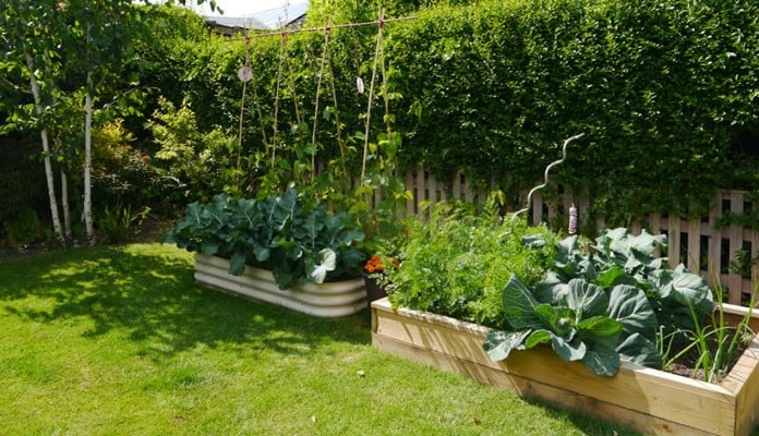 4ft x 6ft Standard Raised Bed, Mrs Kenyon - Nottinghamshire