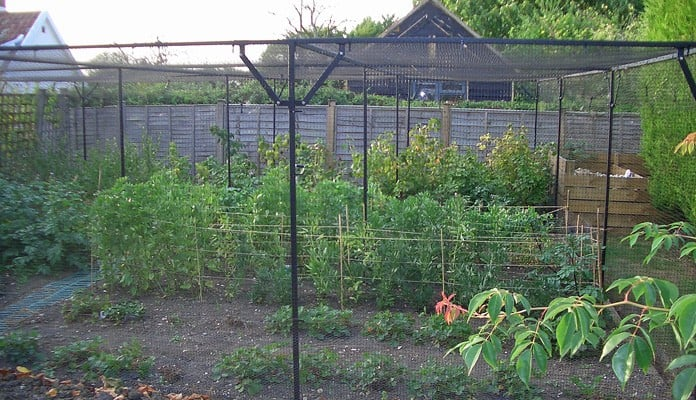 8.1m x 7.8m Bespoke Steel Fruit Cage, Mr and Mrs Margason - Suffolk