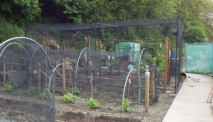 6.5m x 3.5m Bespoke Steel Fruit Cage, Mrs James - Kent