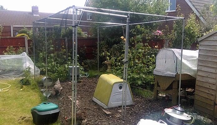 2.25m x 4m Aluminium Poultry Cage, Mr Parrott - Greater Manchester