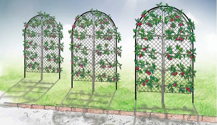 Roman Hoop Arches Design with Full Mesh Panels