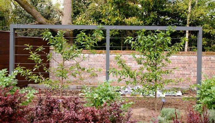 Contemporary Fruit Tree Frame