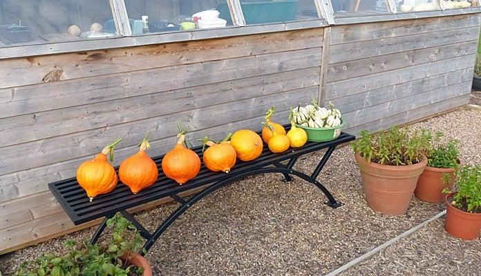 1.8m Garden Bench, Mr and Mrs Ford - Devon