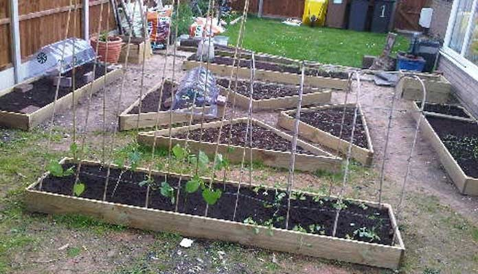 1 Tier Allotment Corner Raised Beds, Miss Chisnell - Lincolnshire