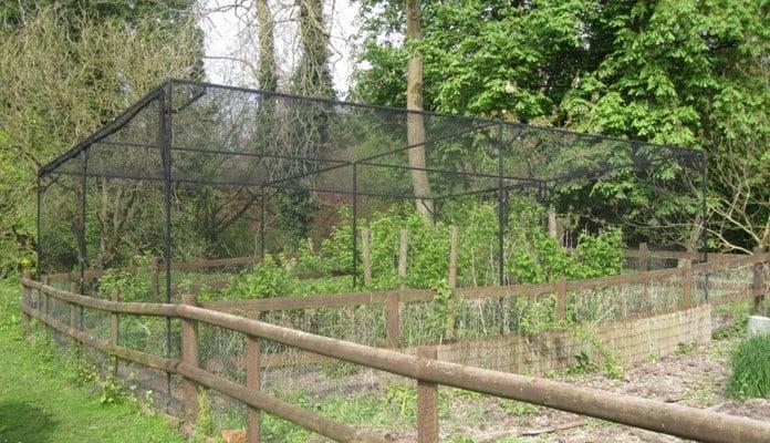 Bespoke Sloped Steel Fruit Cage