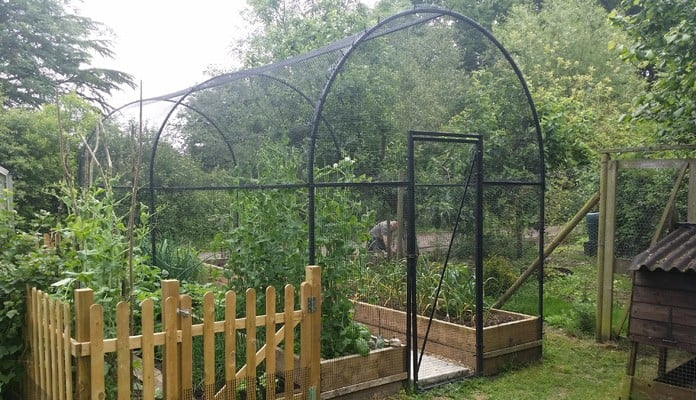 6m Roman Arch Fruit Cage, Mr St. Claire Jones, The Veg Patch People - East Sussex