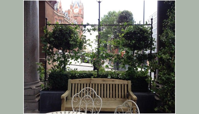 Espalier Style Fence Frames