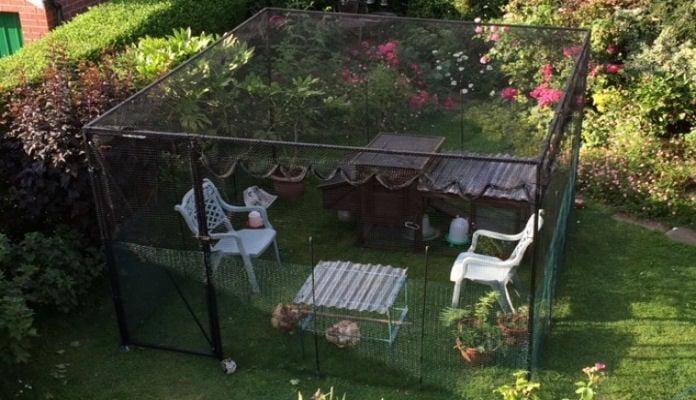 3m x 3.5m Steel Poultry Cage, Mr Ascott - Leeds