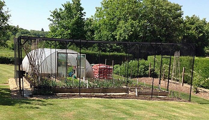 Fruit Cage Steel Sloped 1