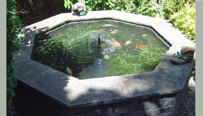 Pond Cover Raised Steel Angled Before