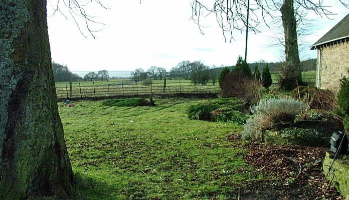 Garden Feb 2012