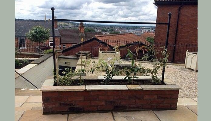 Fence Frames Espalier Courtyard 1