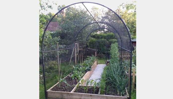 Roman Arch Fruit Cage, Mr St. Claire Jones, The Veg Patch People - East Sussex