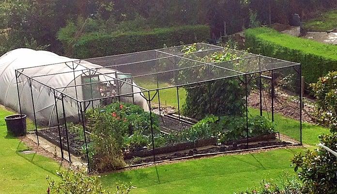 Fruit Cage Steel Sloped 2