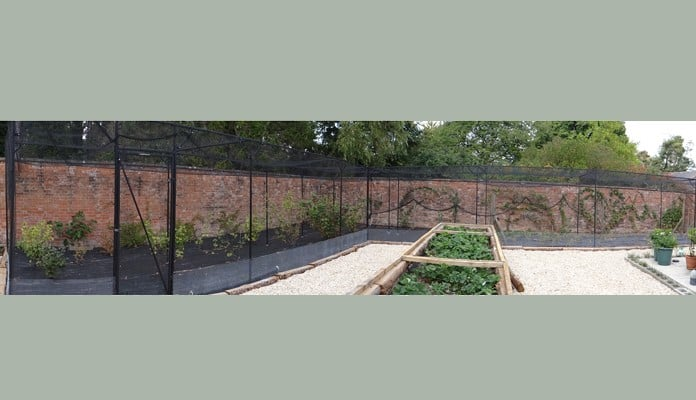 Steel Fruit Cage Tall and Wall Fixed