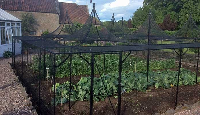 Fruit Cage Steel Peaks with Cut Out 2