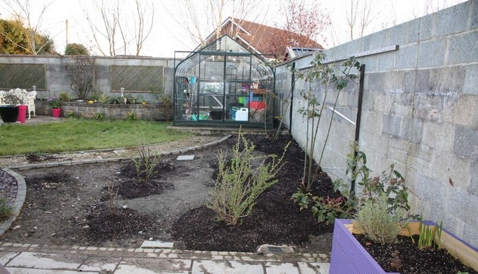 Fruit Cage Steel Angled Sloped Before, Mr M - Ireland