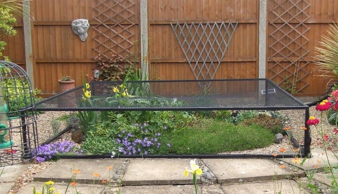 2.5m x 2.5m Raised Steel Pond Cover, Mrs Pugh - Kings Lynn