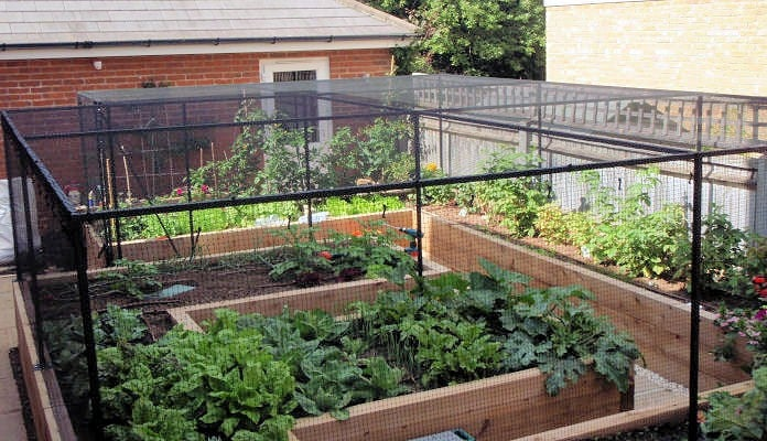 Bespoke walk in steel cage to fit an existing raised bed (after)