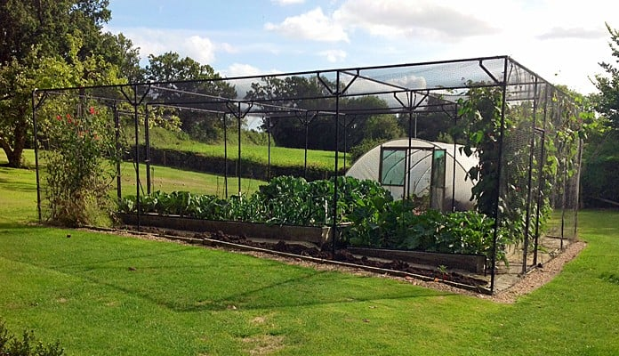 Fruit Cage Steel Sloped 3