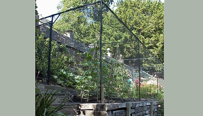 Fruit Cage Showing Slope 2013