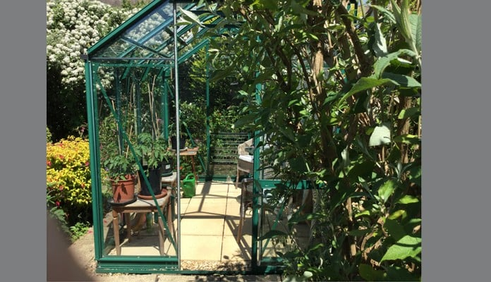 6ft x 8ft Pine Green Greenhouse, Mrs Thomas - Swansea