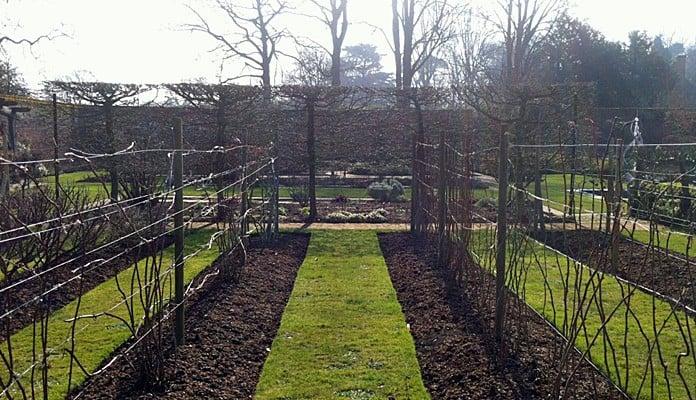 Walled Kitchen Garden Before 3