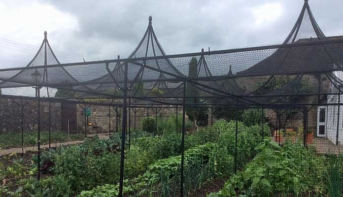 Fruit Cage Steel Peaks with Cut Out 3