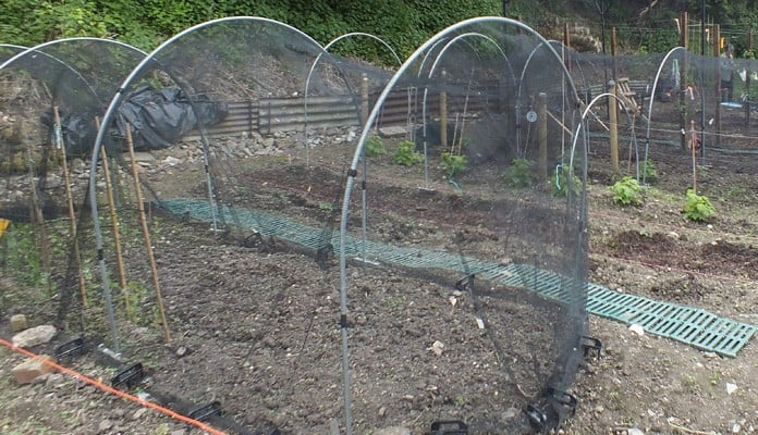 Garden Netting Hoops and Extension Kit, Mrs James - Kent