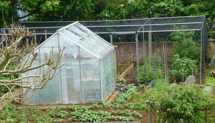 8m x 5m Aluminium Fruit Cage, Mr Prentice - Banbury