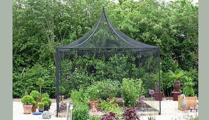 3m x 3m Peak Roof Steel Fruit Cage, Mr Bell - Wiltshire