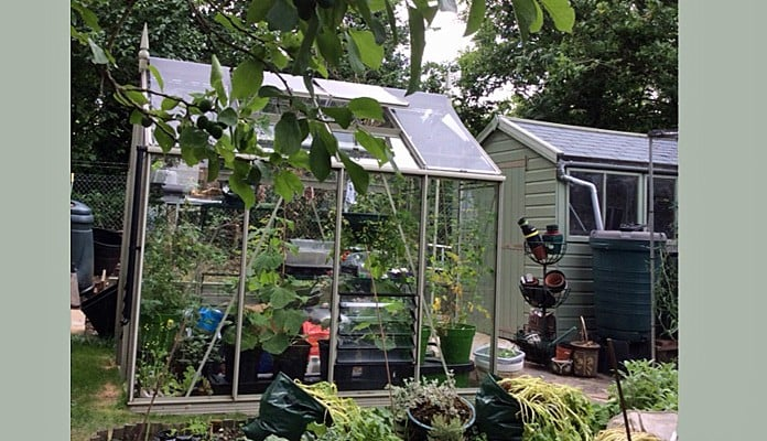 6ft x 8ft Willow Grey Greenhouse, Jan - Kent