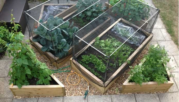 4ft x 8ft Standard and 3 Tier Corner Raised Beds, Mr H - Hampshire