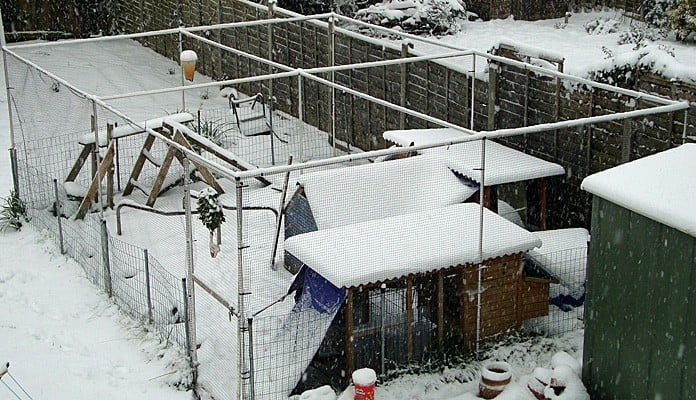 4m x 6m Aluminium Poultry Cage, Mr Harris - Hampshire
