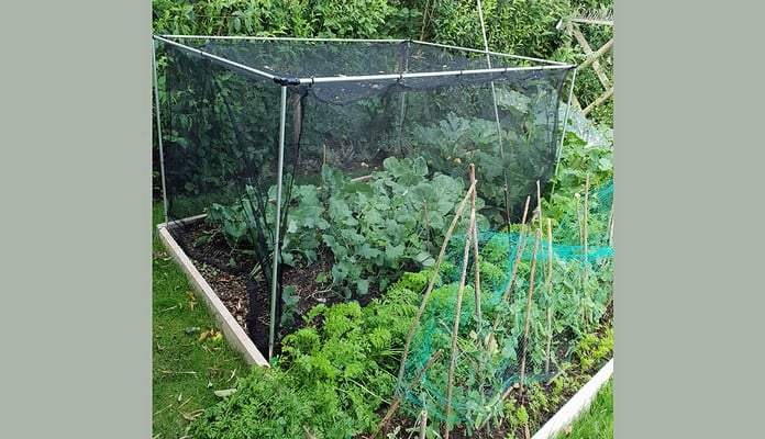 GDN-455 Harrod Stormproof Cage Natural 1.2m, Mr Sharp - Warwickshire