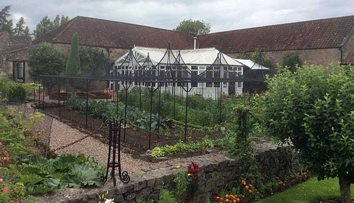 Fruit Cage Steel Peaks with Cut Out 7