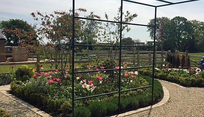 Daisy Barn Garden Square Pergola lavender edged
