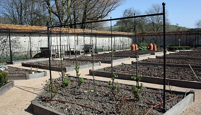 Bespoke Currant and Gooseberry Support - Mr B, Winchester