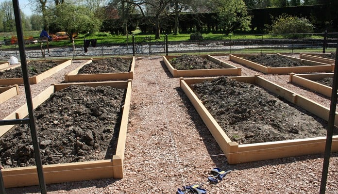 Raised Beds Close Up