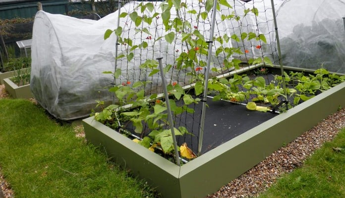 MRB-002 Superior Metal Raised Beds Heritage Green, Mr Tigwell - Surrey