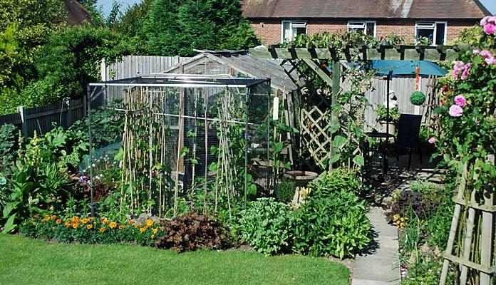 1.9m x 1.8m Bespoke Aluminium Fruit Cage, Mr Gibbon - Shropshire