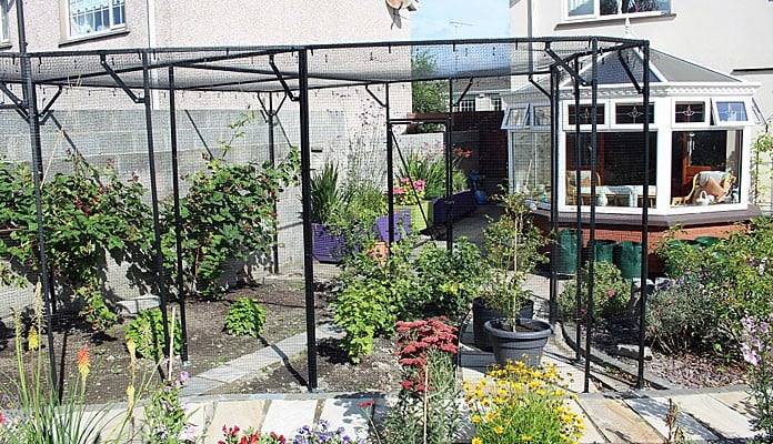 Fruit Cage Steel Angled Sloped After, Mr M - Ireland