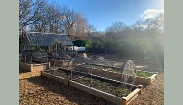 1 and 2 Tier Superior Bespoke Raised Beds with hoops and butterfly net covers