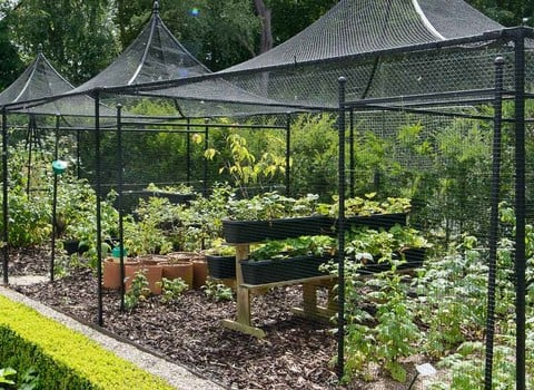Fruit Cages - UK Made