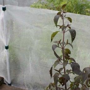 Pest Traps, Barriers & Sprays
